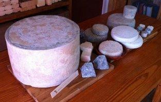Muestra de quesos Cantagrullas