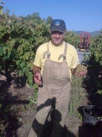 Ton Rimbau en sus viñedos