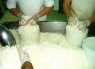 Elaboración artesanal del queso Vicente Pastor